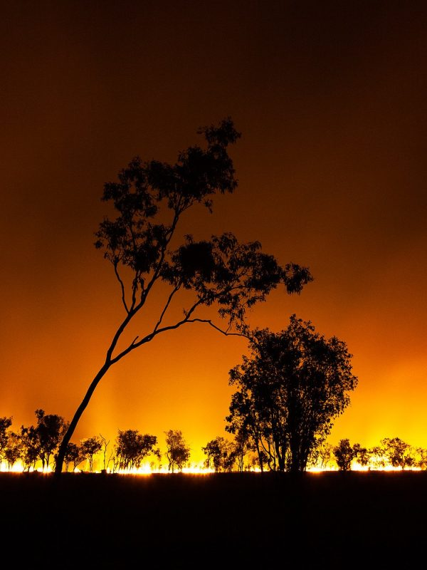 Wildfire, Australia
