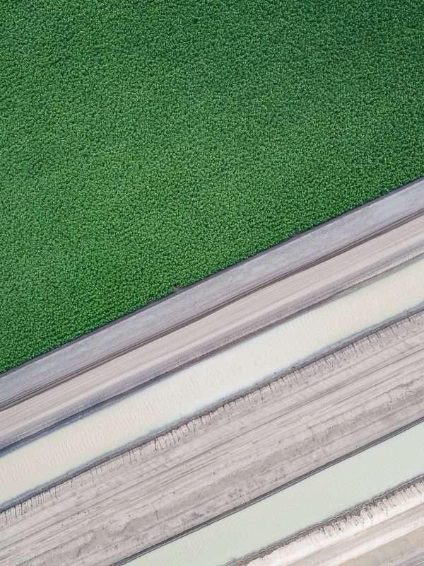 Agricultural Farming Australia