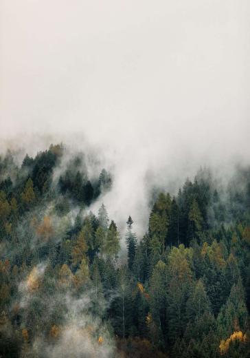 Fog in the dolomites