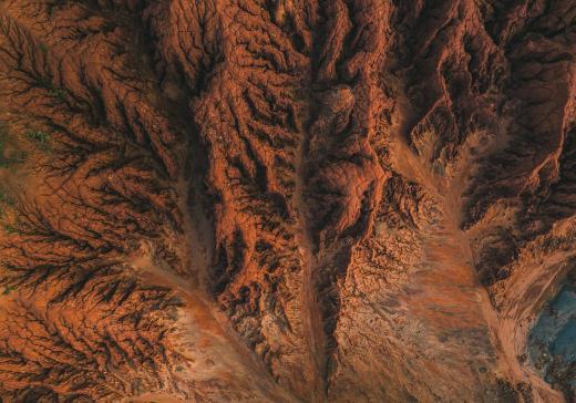 Broome fossil rocks