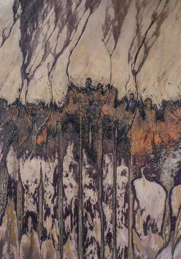 Marsh textures France