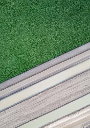 Abstract Aerial Art_Harvest