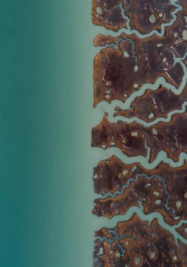 Abstract Aerial Art_Segment